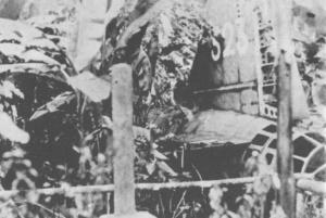 The wreck of Yamamoto's plane.